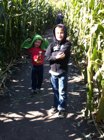 Pumpkin Patch Corn Maze